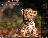 Ubuntu/Kubuntu zainstalowałeś i nie wiesz jak zacząć?