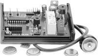 Immobilizer wykorzystuj�cy pastylki DS1990