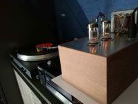 Lampowy preamp gramofonowy - płytki bass