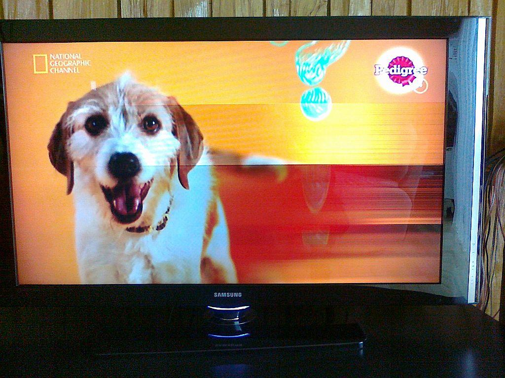 TV LCD Samsung LE46F86BD migotanie cz�ci ekranu