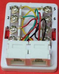 RJ11 6P4C - Jak podlaczyc kabel dwu�y�owy do RJ11 6P4C