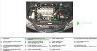 Nissan primera p12 2,2 dti czujnik położenia wału