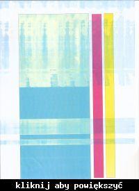 Ricoh 3235 brudzi kolorowe wydruki