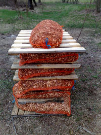 Projekt i zdj�cia z budowy  r�baka do ga��zi.