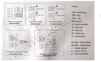 Citroen C3 2004 - Sterownik centalnego zamka