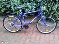 Silnik rowerowy - Pytania o rower i mieszanie paliwa