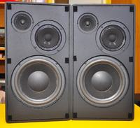 Identyfikacja kolumn głośnikowych B&S