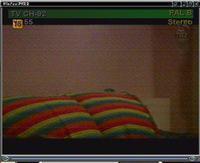 Tuner TV (Leadtek Winfast 2000XP RM) - brzydki, �nie��cy obraz