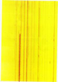 Ricoh ColorLaser AP206 - rozmazywanie wydruku