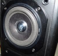 Regeneracja głośników GDN 12/35 zawieszenia