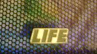 [Sprzedam] Stroboskop IFK 120 i maskownice LIFE