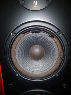 JBL L6 - uszkodzone zawieszenie głośników.