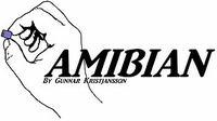 Amibian - transformacja Raspberry Pi 3 w komputer Amiga