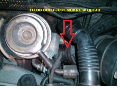 VW B6 - Stukanie przy zimnym silniku