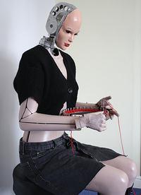 Agnes - robot robi�cy na drutach