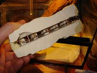 Grzałka (mini kaloryfer) do terrarium 20W