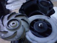 Zelmer wodnik typ 519.5. Przy wyłączaniu silnik rzęzi.