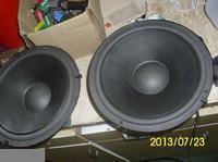 Indentyfikacja modelu głośnika na podstawie zdjęć - czy to Tonsil 25/60/1?