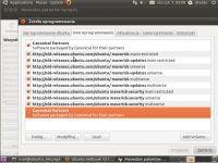 Ubuntu netbook 10.10 spolszczenie.
