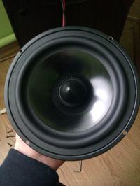 Jakie głośniki 16.5cm 8OHM??