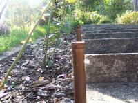 Automatyczne podświetlane schody