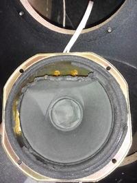tonsil gdm 16/80/1 głośnik średniotonowy