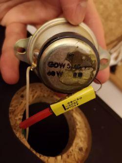 Tonsil ZgP-25-8-585 - reinkarnacja?