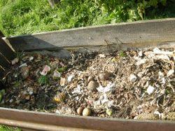 Młynek do odpadków - działanie w instalacji z szambem