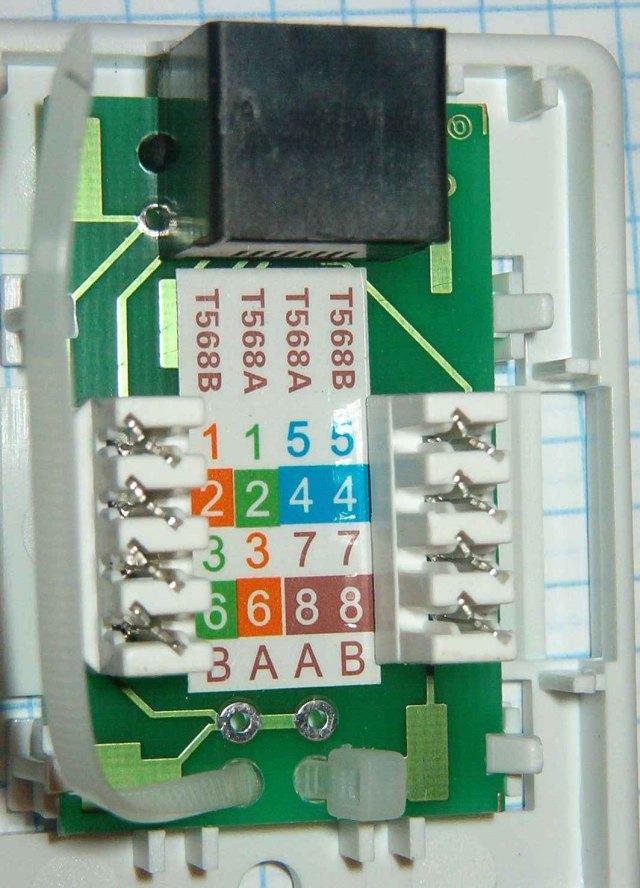 Standard Ethernet - Wtyczki i gniazda RJ45 - elektroda.pl