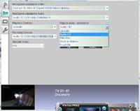Tuner Leadtek TV2000XP Expert - regulacja głośności z pilota
