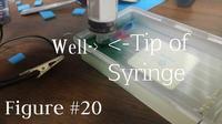 Elektroforeza żelowa w domu