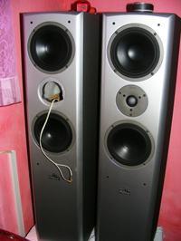 Magnat Vector 55 głośnik wysokotonony nie działa