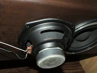 Kolumny Dynamic Speaker AX8