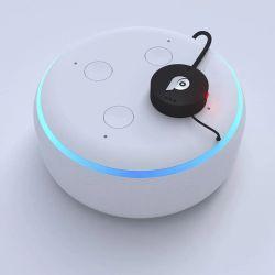 Paranoid - urządzenie do zakłócania działania asystentów domowych