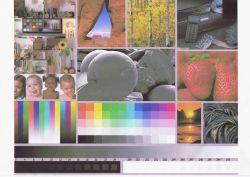 "EPSON L3050 - Nowa drukarka drukuje ""brudne"" kolory"