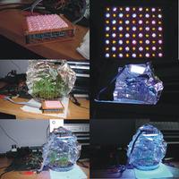 Wydajna lampka dla roślinek