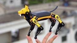 Petoi Bittle - robotyczny pies wykorzystuje Arduino i Raspberry Pi do edukacji