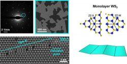 Znalezienie nowych rodzajów defektów materiału 2D krokiem dla elektroniki