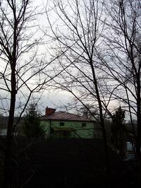instalacja anteny tv sat a drzewa, itp.