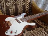 Gitara elektryczna własna konstrukcja