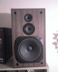 Regeneracja starych kolumn z głośnikami Tonsil