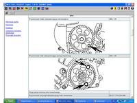 Peugeot Expert 1,9 TD - Poszukuję schematu rozrządu Peugeot Expert 1,9 TD 97 r