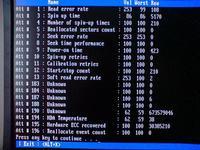 Przekłamywanie danych przy przenoszeniu między komputerami