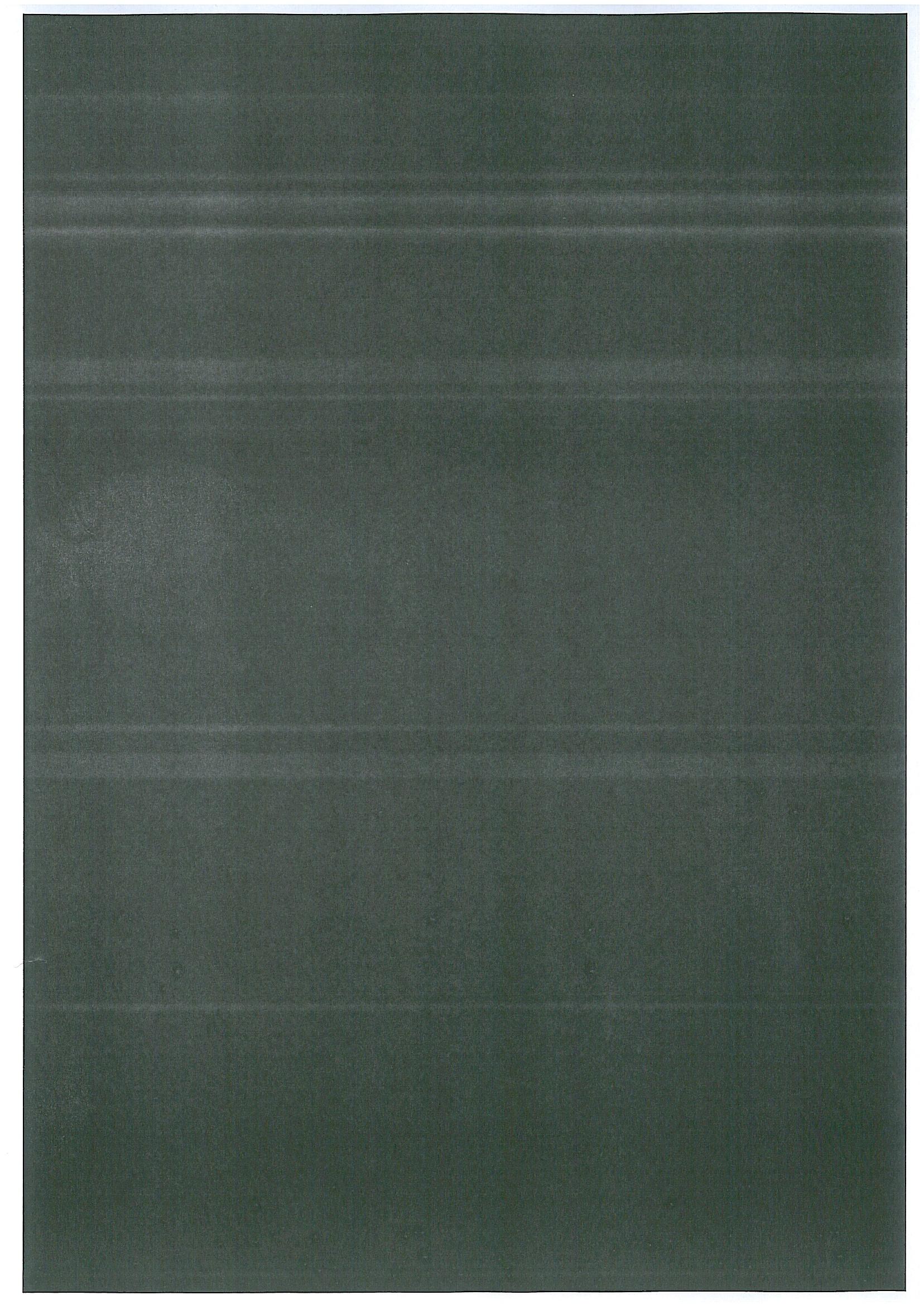 bizhub C350 - Pasek na wydruku (zdjecie)