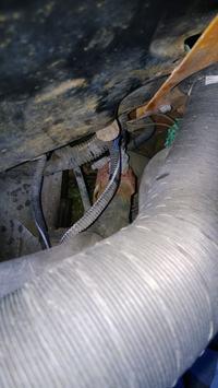 Kangoo 1.4 1998r. - włącznik wentylatora chłodnicy - położenie