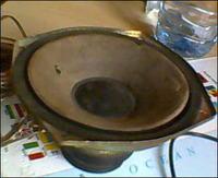 Identyfikacja głośnika Pioneer