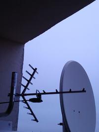 Jaka antena tv dvb-t i radia.