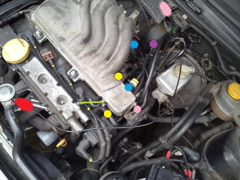 Astra F 1 6 16v X16xel Podłączenie Przewod 243 W Podciśnienia