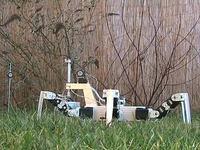 Kosiarka do trawy - robot