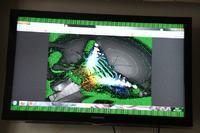 Samsung LE40D550 - Zielone kropki po podłączeniu do laptopa